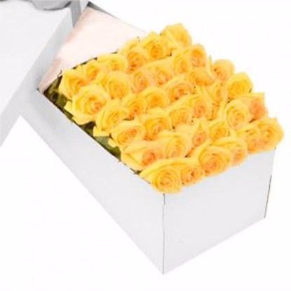 Picture of 36 Yellow Tea Roses