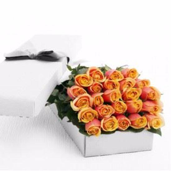 Picture of 24 Peach Tea Roses