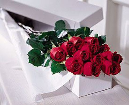 Picture of 12 Red Grande Roses