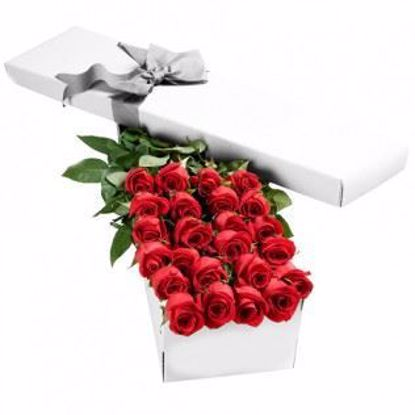 Picture of 24 Red Roses