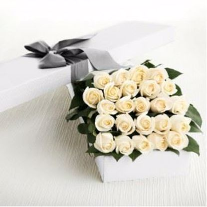 Picture of 24 White Roses
