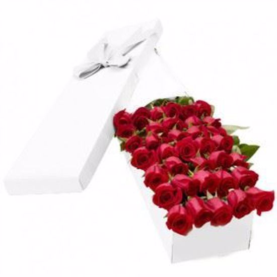 Picture of 36 Red Roses
