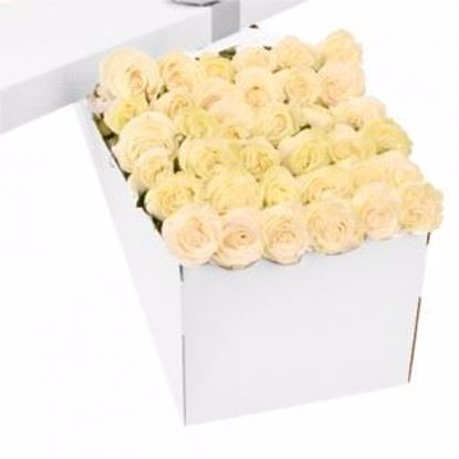 Picture of 36 White Roses