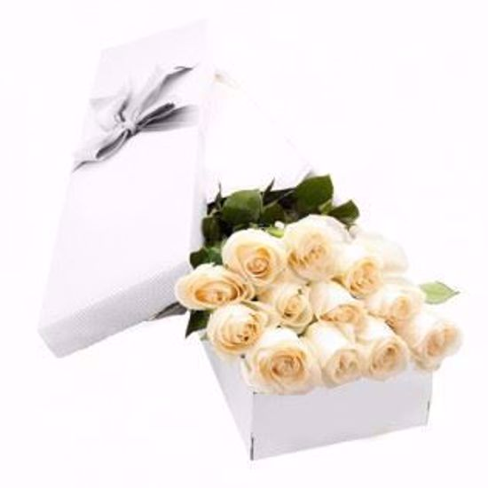 Picture of 12 White Roses